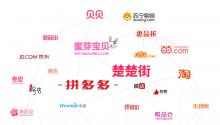 2015中国电子商务排行榜