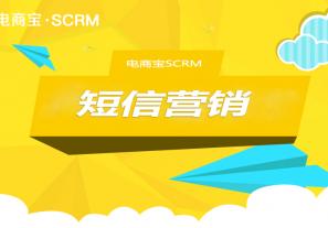做不好短信营销?电商宝SCRM短信营销来教你