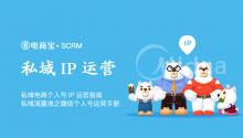 私域电商个人号IP运营指南 私域流量池之微信个人号基础操作手册