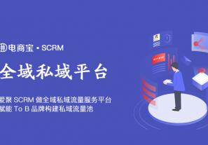 爱聚SCRM马良:做全域私域流量服务平台,赋能To B品牌构建私域流量池!