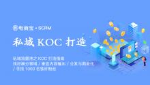 私域流量池之KOC打造指南:找好细分领域、垂直内容输出、分发与商业化、寻找1000名铁杆粉丝!