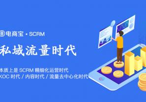 私域流量大趋势,本质上是SCRM精细化运营时代、KOC时代、内容时代、流量去中心化时代!