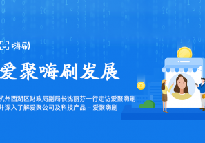 杭州西湖区财政局副局长沈丽芬一行走访爱聚嗨刷并深入了解爱聚公司及科技产品-爱聚嗨刷!