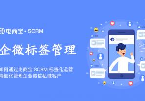 企微如何通过电商宝SCRM标签化运营,精细化管理企业微信私域客户?