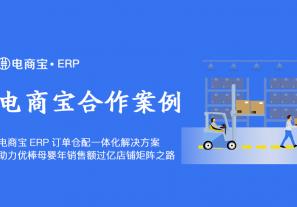 案例丨电商宝ERP订单仓配一体化解决方案,助力优棒母婴年销售额过亿母婴店铺矩阵之路!