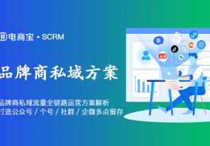 品牌商大商家私域流量全链路运营方案案例解析:打造公众号+个人微信+社群+企业微信多点留存矩阵!