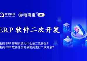 电商ERP管理系统为什么要二次开发?电商ERP软件什么时候需要进行二次开发?