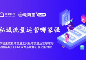 市面上主流私域流量工具私域流量运营哪家好?全国私域SCRM软件系统排行及功能对比!