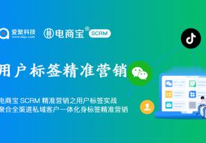 电商宝SCRM精准营销之用户标签实战,聚合全渠道私域客户一体化身份和标签精准营销!
