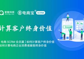 [电商SCRM会员篇]如何计算客户终身价值,如何计算电商企业消费者顾客终身价值?