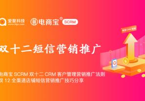 基于电商宝SCRM的双十二CRM客户管理营销推广法则,双12全渠道店铺短信营销推广技巧分享!