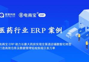 案例分享 | 电商宝ERP助力长康大药房实现全渠道店铺数智化转型,打造高效仓库及数据管理轻松实现日发万单!