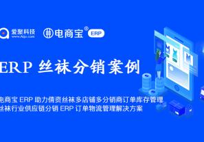 案例分享 | 电商宝ERP助力倩资丝袜多店铺多分销商订单库存管理,丝袜行业供应链分销ERP订单物流管理解决方案!